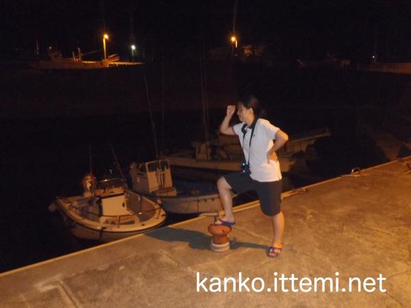 式根島夜の港4