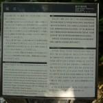 江ノ島 福石(説明文)