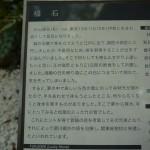 江ノ島 福石(説明文・接写)