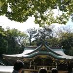 辺津宮、茅の輪