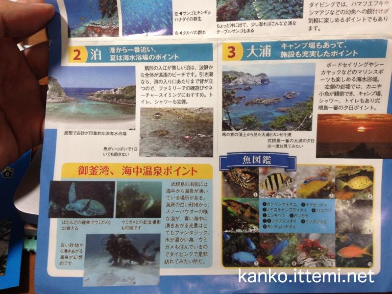 式根島ネイチャースイム ベスト3ガイド4