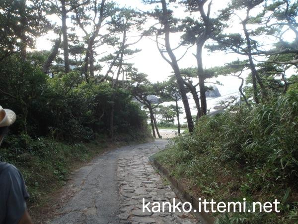 中の浦海水浴場の小道