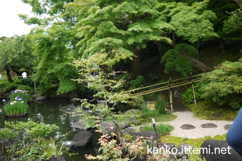 長谷寺の池